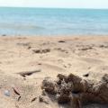 Морской песок на пляже в Волне