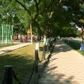 Отдых в Тамани. На улицах станицы. Детские и спортивные площадки в Тамани